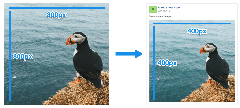 The Ideal Image Sizes For Your Social Media Posts Guidelines For