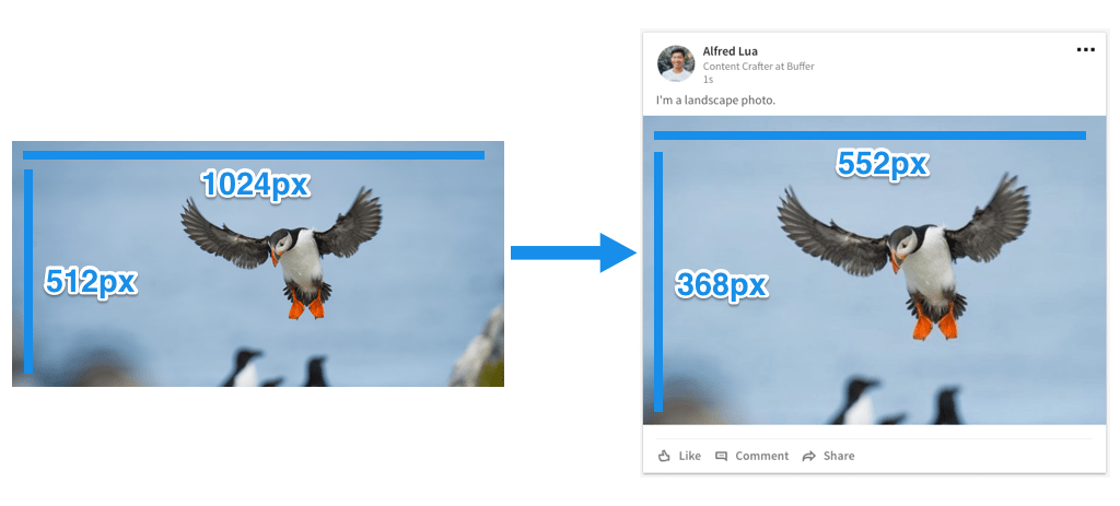 The Ideal Image Sizes for Your Social Media Posts